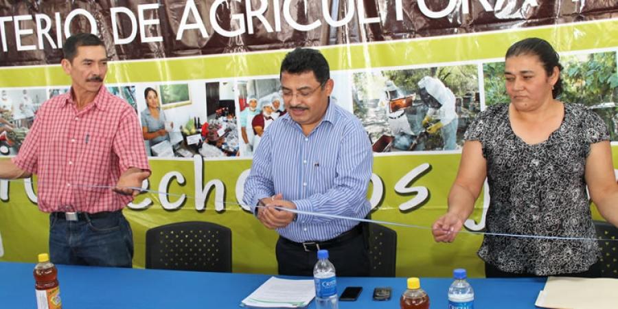 MAG inaugura Centro de Acopio y Servicios para miel de abeja